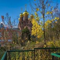 осенние зарисовки :: Moscow.Salnikov Сальников Сергей Георгиевич