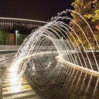 "Парк ""Краснодар"". Вечерняя прогулка. :: Виталий Немченко"