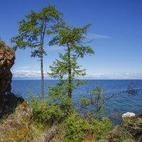 Ушканий остров. :: vusovich oleg