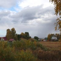 Дачная осень. :: Вера Литвинова