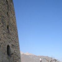 Сторожевая родовая башня, стена :: Анна Воробьева