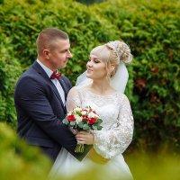 Свадебная фотосессия Кричев - Климовичи :: Евгений Третьяков