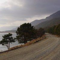 Берег Байкала :: Nikolay Svetin