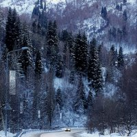 Здесь горы ограняют тишину.... :: LORRA ***