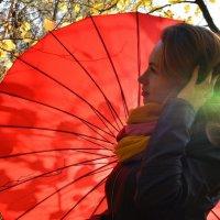 Осень :: Светлана Окорокова