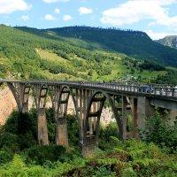 Черногория,2020г. Мост Джурджевича через реку Тара :: tina kulikowa