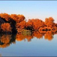 Осень :: Ахмед Овезмухаммедов
