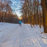 Прогулка по парку :: leff Postnov