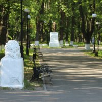 Шуя. Центральная аллея городского парка. :: Сергей Пиголкин