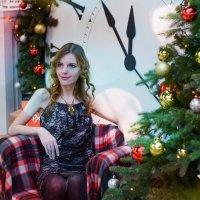Новогоднее настроение :: Светлана Громова