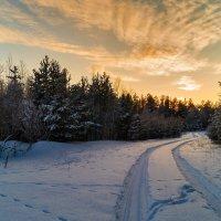 Зимние прогулки :: Оксана Галлямова