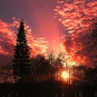 Огненный закат :: sm-lydmila Смородинская