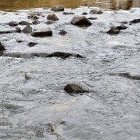 Вода по камушкам бежит :: Gera