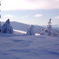 Только елки в треугольных платьях...Зима уже в пути..) :: Любовь Иванова