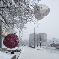 Мороз крепчает :: Валерий Михмель
