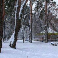 Зимняя карусель :: Volodymyr Shapoval VIS t