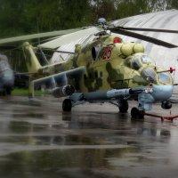 После дождя :: Павел Галактионов