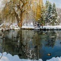 Снежное воспоминание..... :: Варвара