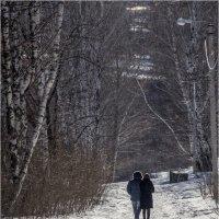 По зимнему парку :: Сергей Калужский
