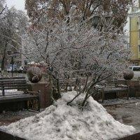 Ледяной дождь :: Роман Савоцкий