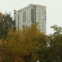 Осень в городе. :: sav-al-v Савченко