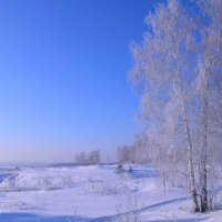 Морозный день в январе :: Вера Андреева