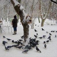была зима... :: Людмила