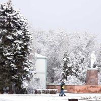 Снег :: Наталия Сарана