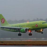 Airbus A319 :: Александр Святкин