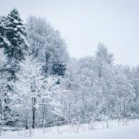 Русская зима :: Анна Лищук