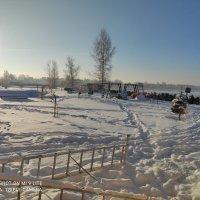 Морозное утро :: Artur Pauris