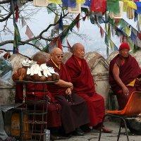 Монахи. Непал. :: Светлана Булашевская