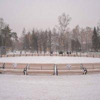 Центральный парк :: Dmitry i Mary S