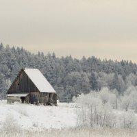 Зима в деревне :: Анна Азарёнок