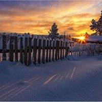 На закате... :: Владимир Чикота