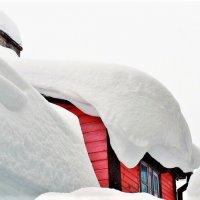 Зима... :: Евгений Яхим