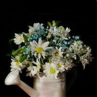 Ах, эти белые цветы! :: Наталья (D.Nat@lia)