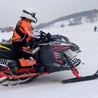 7 февраль , День зимнего спорта..(1) :: MoskalenkoYP .