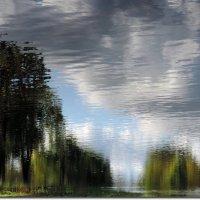 Отражение.Природа Зазеркалья :: Лариса С.