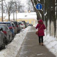 Когда ты думаешь, что только тебе пришла в голову мысль поехать в Петергоф зимой :-) :: ii_ik Иванов
