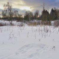 ********Зима, ферваль :: Наталья Лакомова