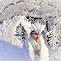 Русская зима... :: Евгений Яхим