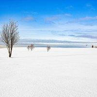 Зимний пейзаж :: Roman Zateshilov