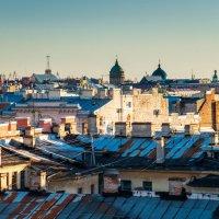 Питер,вид с крыши :: Наталия Л.