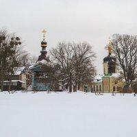 Ботанический сад на Зверинецкой :: Олег
