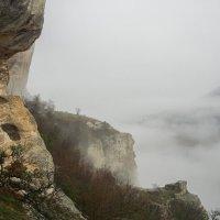 Туманное утро :: Юлия Легкая