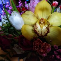 Flowers :: Елена Елена
