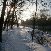 Зимний пейзаж :: MarinaKiseleva