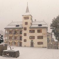 snow :: Elena Wymann
