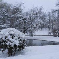 Зима  в  КРыму :: Валентин Семчишин